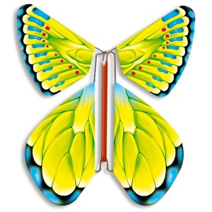 Papillon volant vert