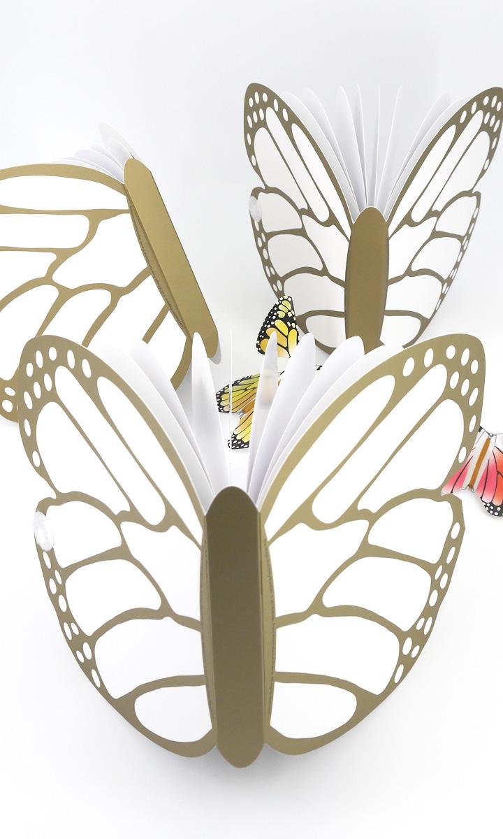 Livret Papillon Or - Goliath dffusion