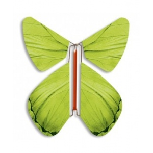 Magic Butterfly green spring