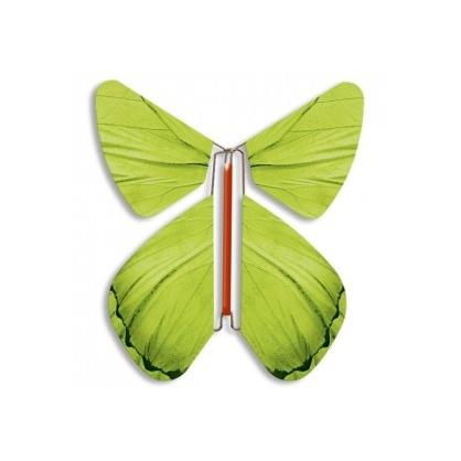 Papillon volant Printemps Anis