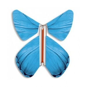 Papillon volant Printemps bleu