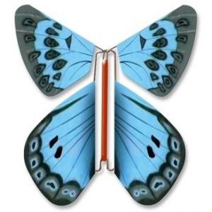 """Papillon volant """"Azuré des Cytises"""" MFT 682"""