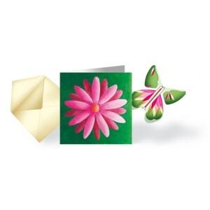 Pack 5 Cartes Fleur & Papillon Volant
