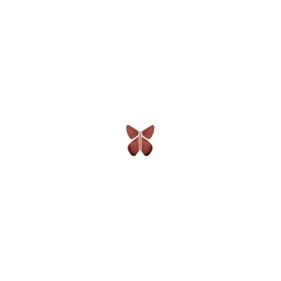Ungewöhnlich Süße Schmetterling Färbung Seite Bilder - Entry Level ...