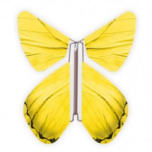 Papillon volant Printemps Jaune