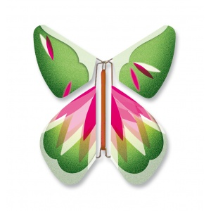 Magic Butterfly  Rosy Green