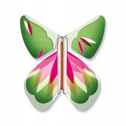 Papillon Rose-Vert