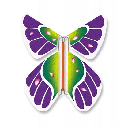 Papillon oiseau
