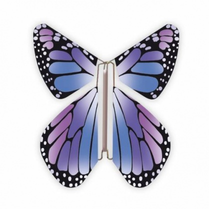 Magic Butterfly New Purple
