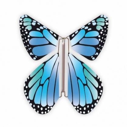 Papillon volant  New bleu