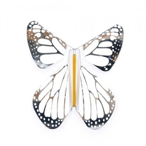 Pack 5 Schmetterlinge New Weiss-Silber Metall