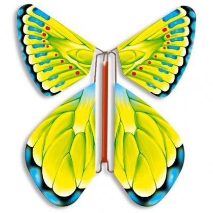 Magic Butterfly  green