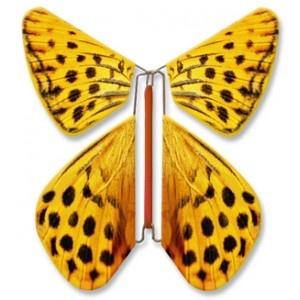 pack 10 Papillons volants Miel