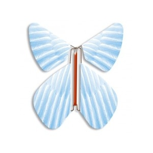 Papillon volant bleu plume
