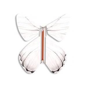 Papillon volant Printemps blanc